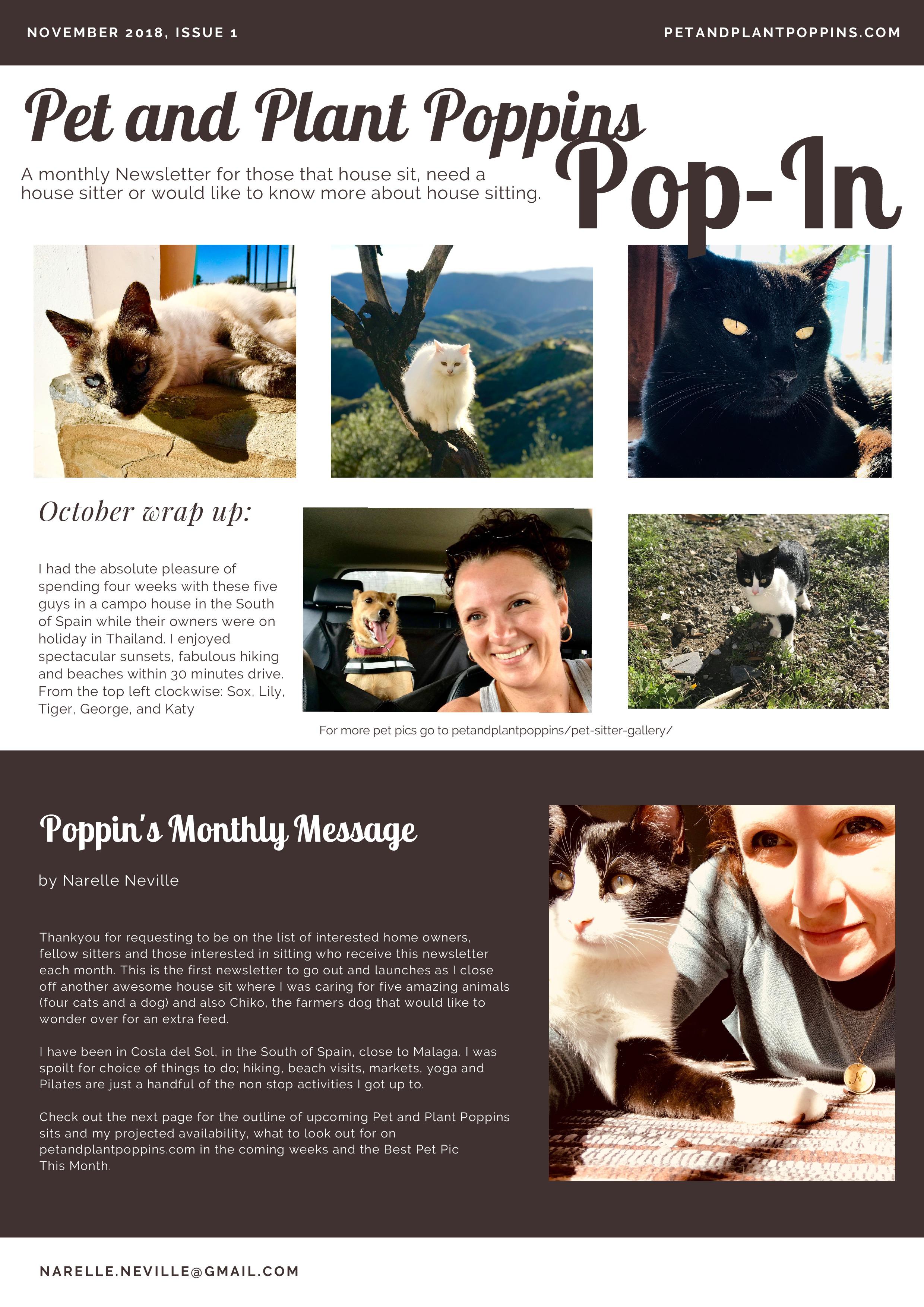PetandPlantPoppins Email Newsletter November 2018-page-1