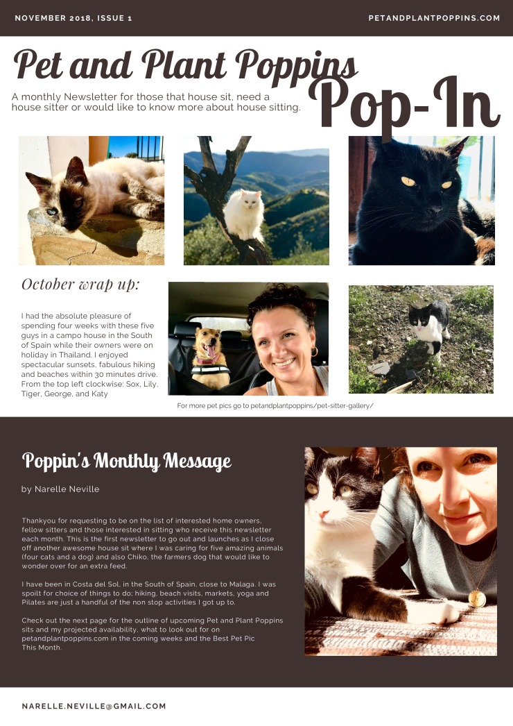 PetandPlantPoppins Email Newsletter November 2018-page-1