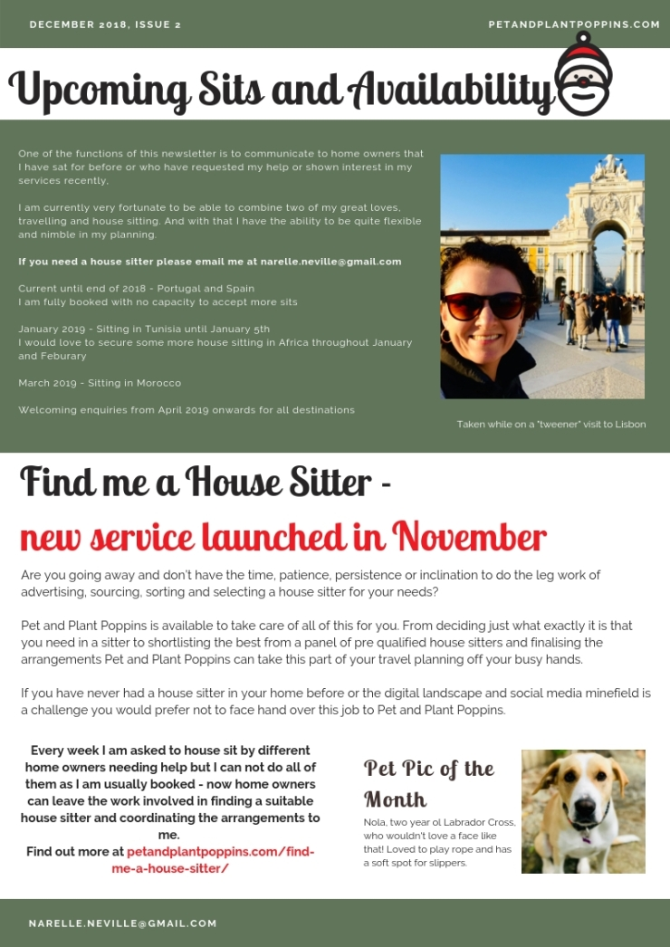 PetandPlantPoppins Email Newsletter December 2018-page-2