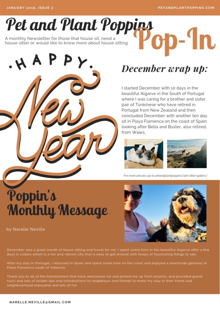 petandplantpoppins email newsletter january 2019-page-1