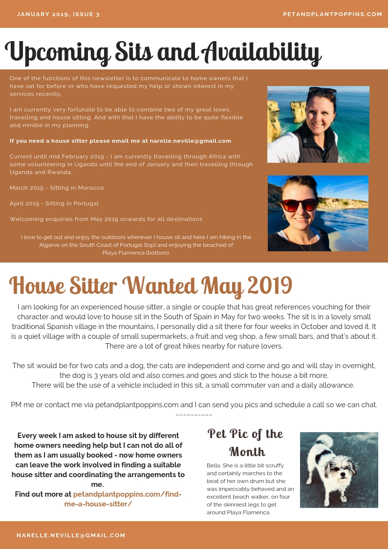 petandplantpoppins email newsletter january 2019-page-2