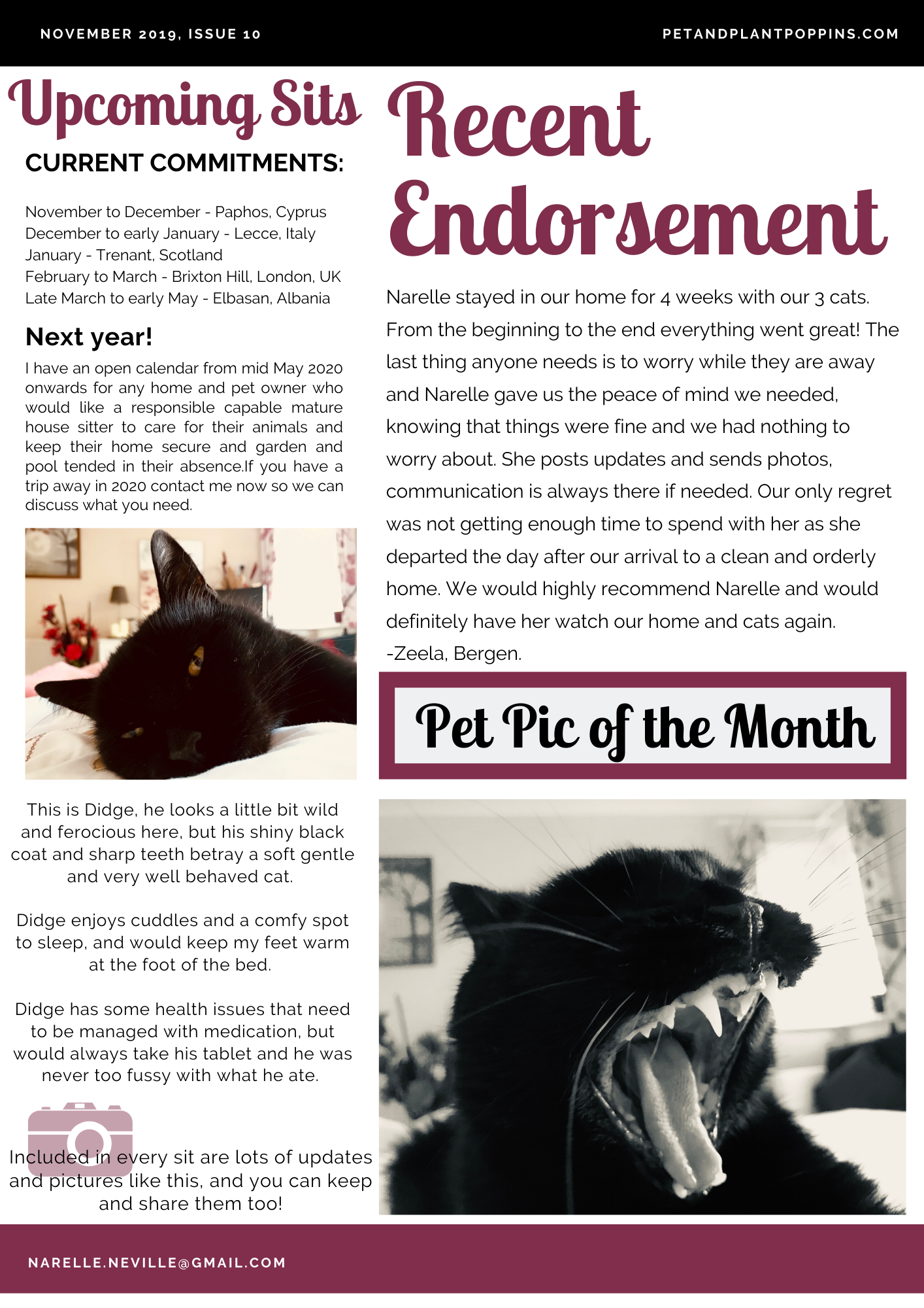PPP Newsletter November 2019 page 2