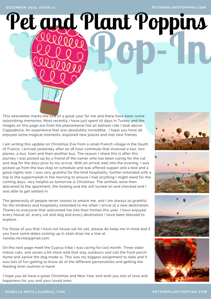 PPP Newsletter December 2019 page 1