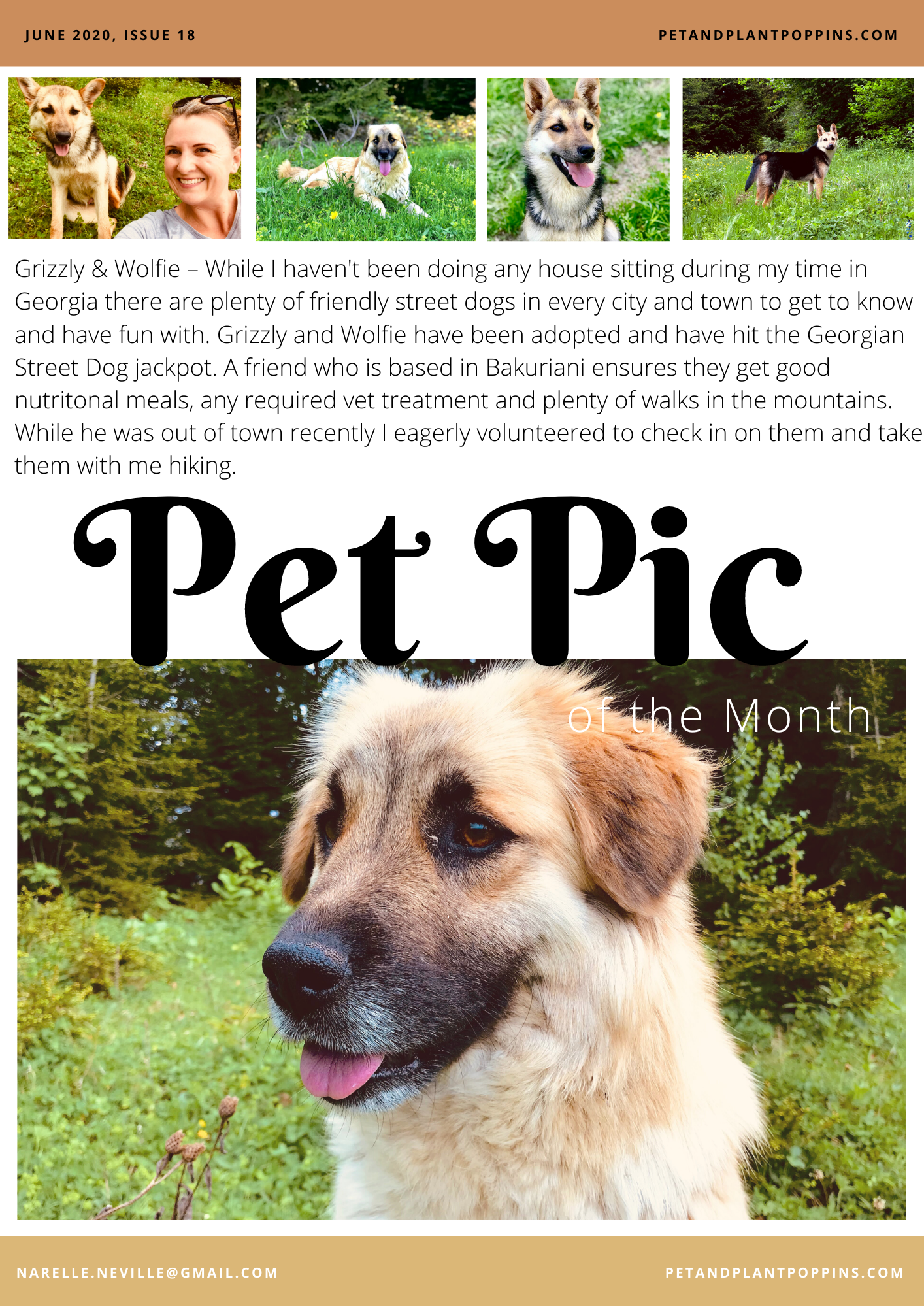 PPP Newsletter June 2020 page 2